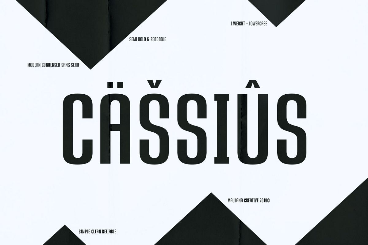 CASSIUS - Sans Font example image 1