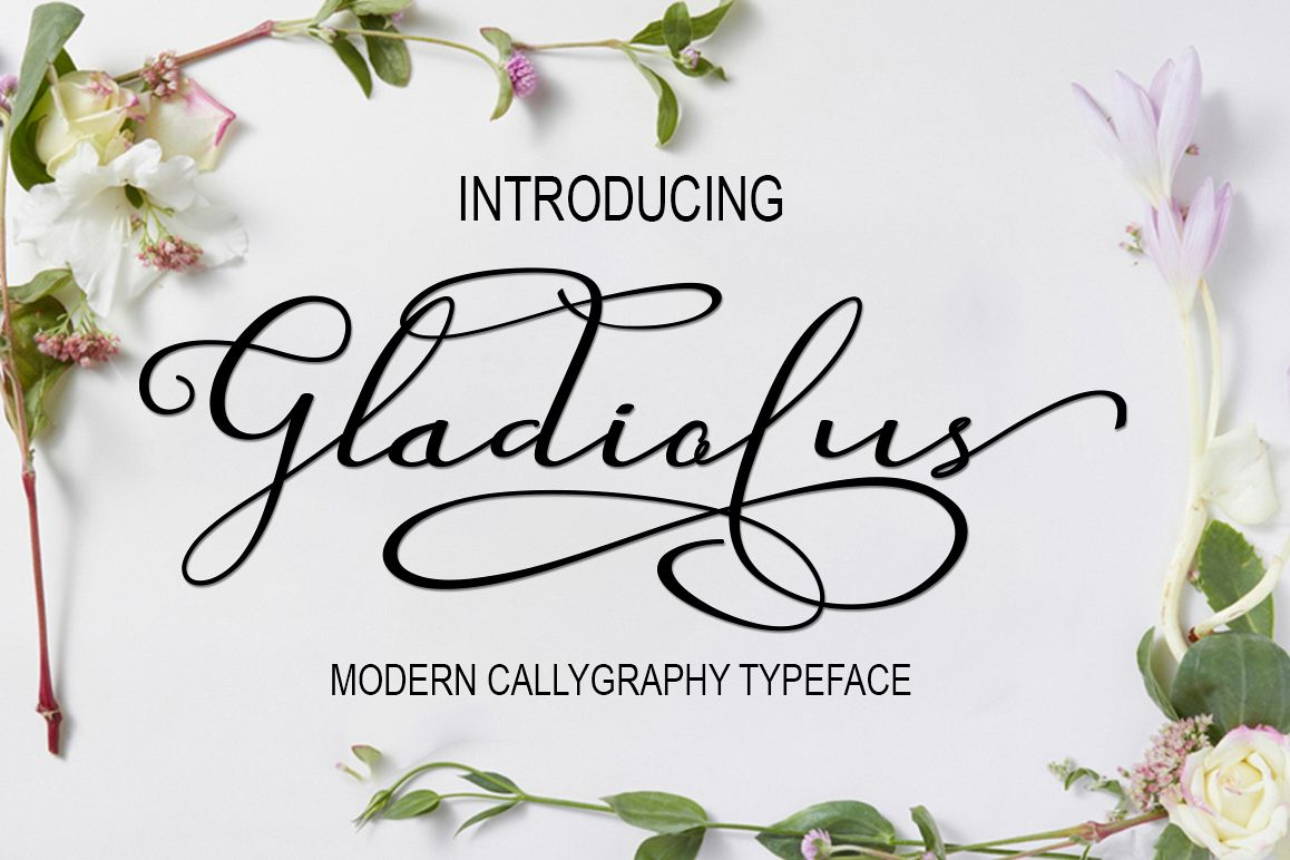 Gladiolus example image 1