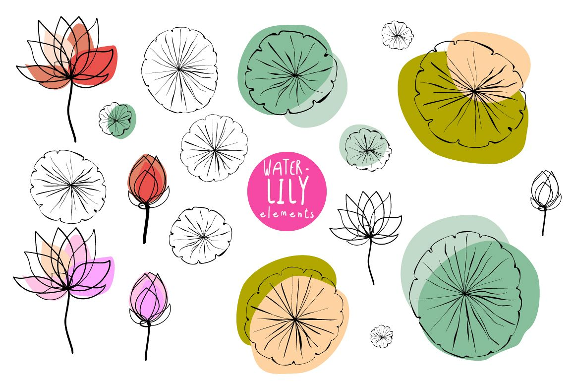 Water Lily Elements and Pattern swatches example image 1
