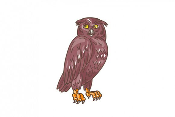 Owl Observing Looking Drawing example image 1