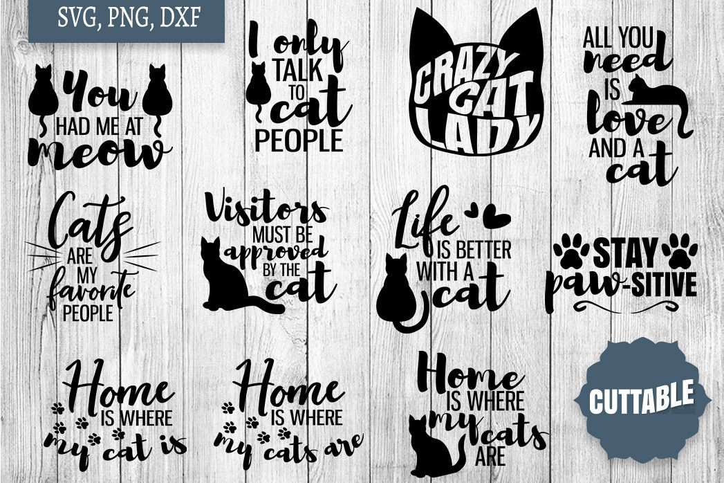 Cat SVG Bundle, Cat Lover Cut Files, Cat SVG quotes example image 1