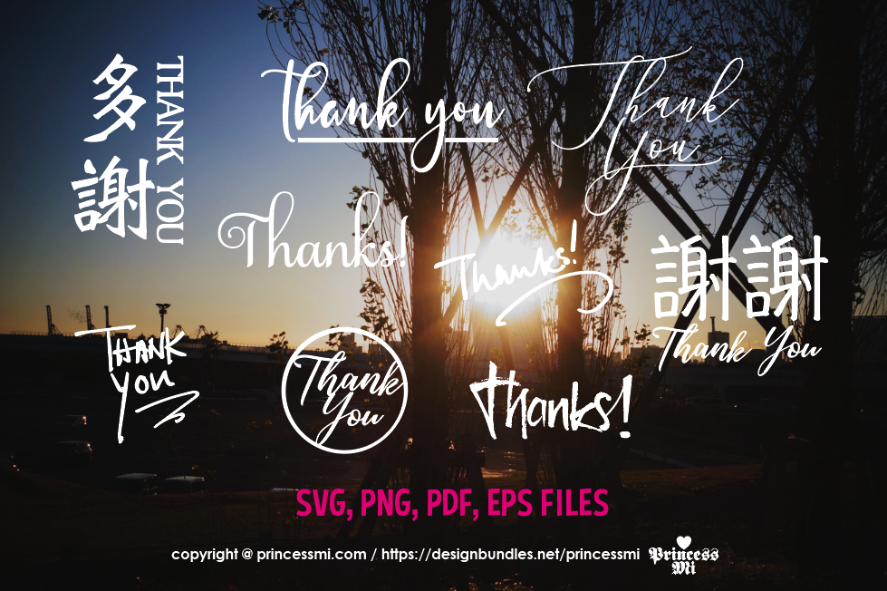 Photo Overlays , thank you text, chinese / svg, eps, png example image 1