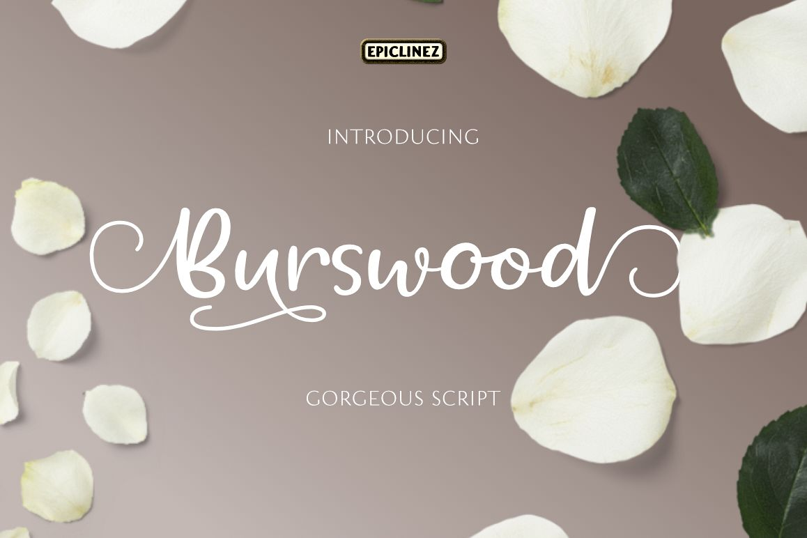 Burswood - Gorgeous Script example image 1