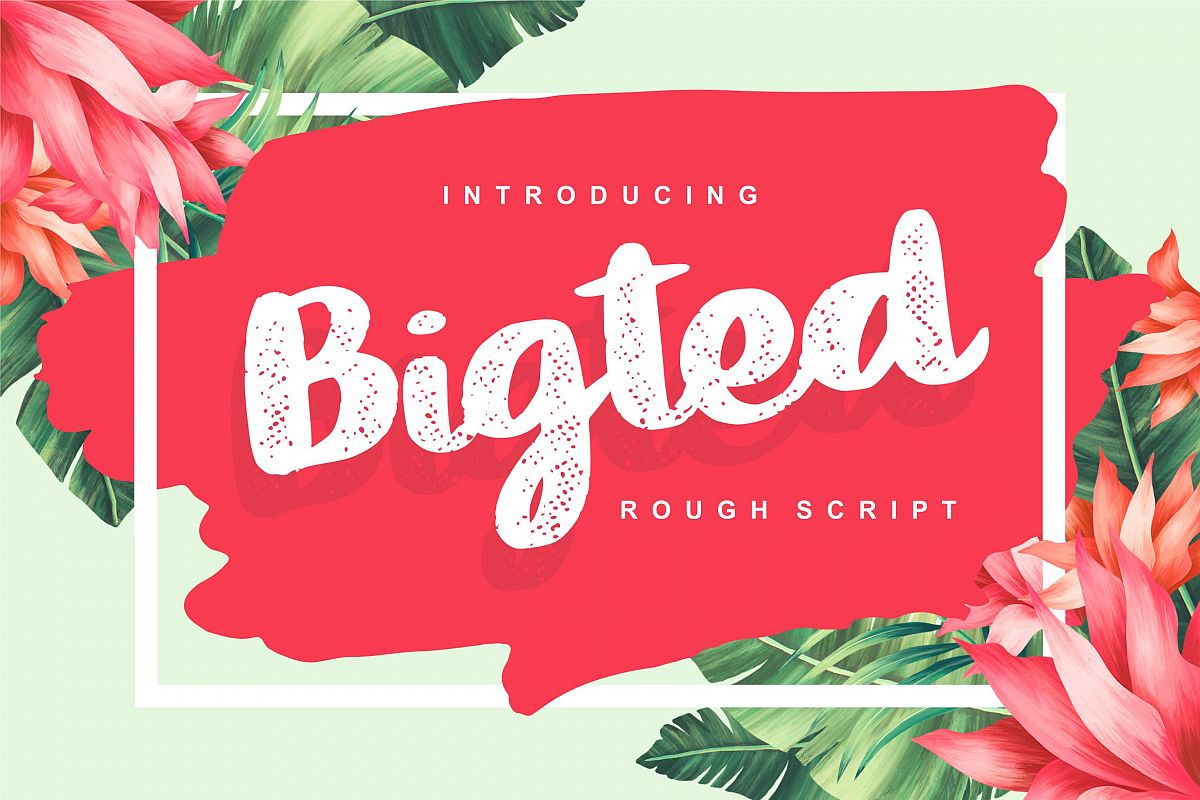 Bigted | Rough Script Font example image 1