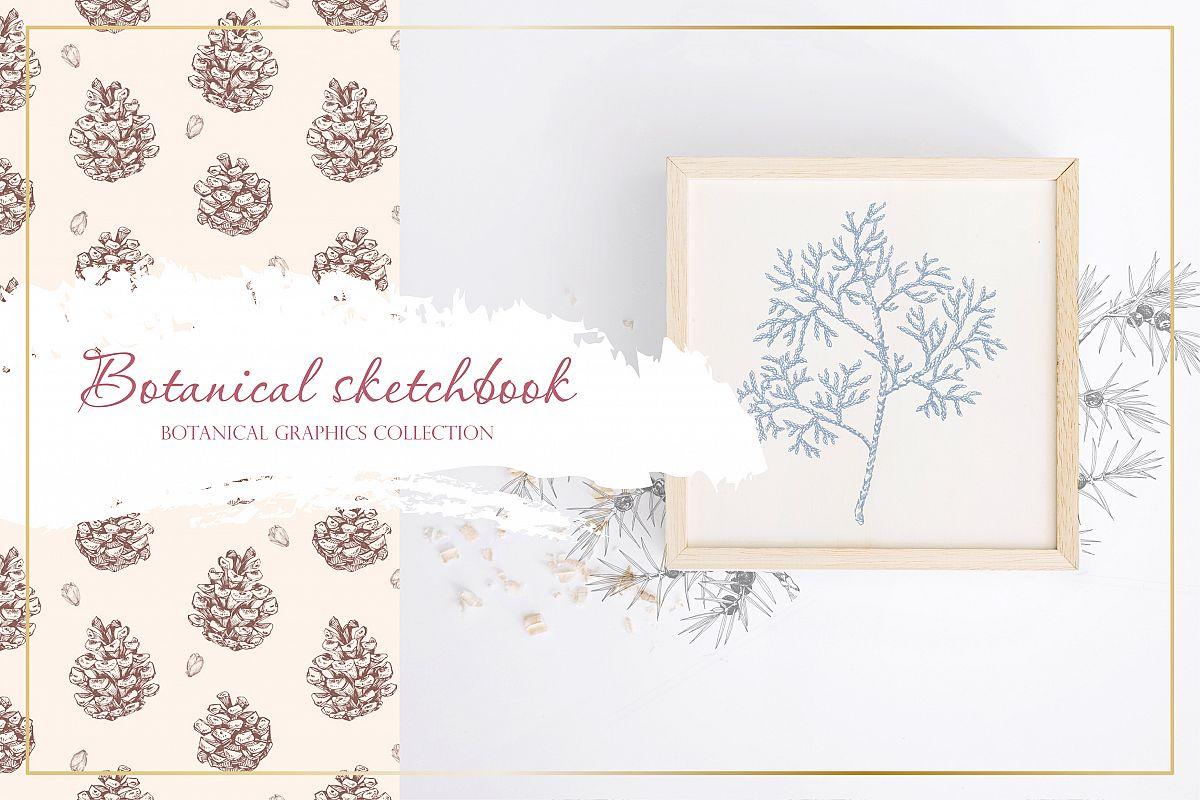 Botanical sketchbook. Vol.1 example image 1