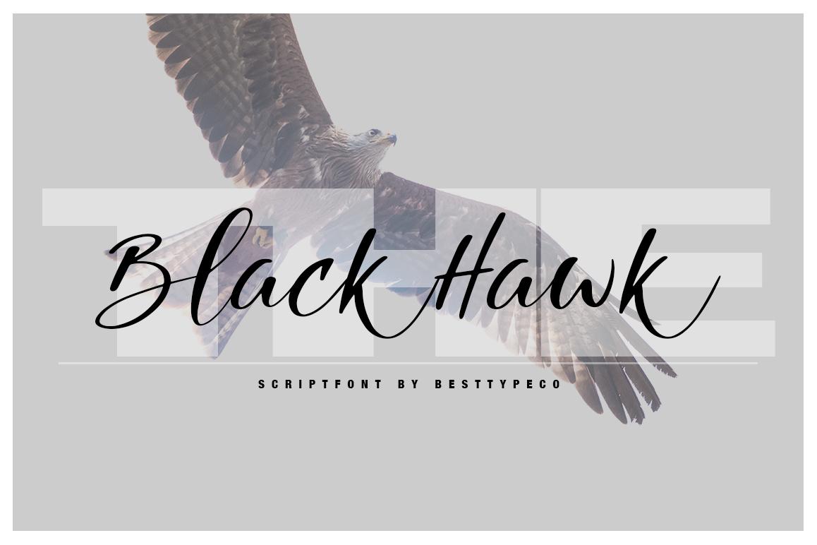 The Black Hawk example image 1