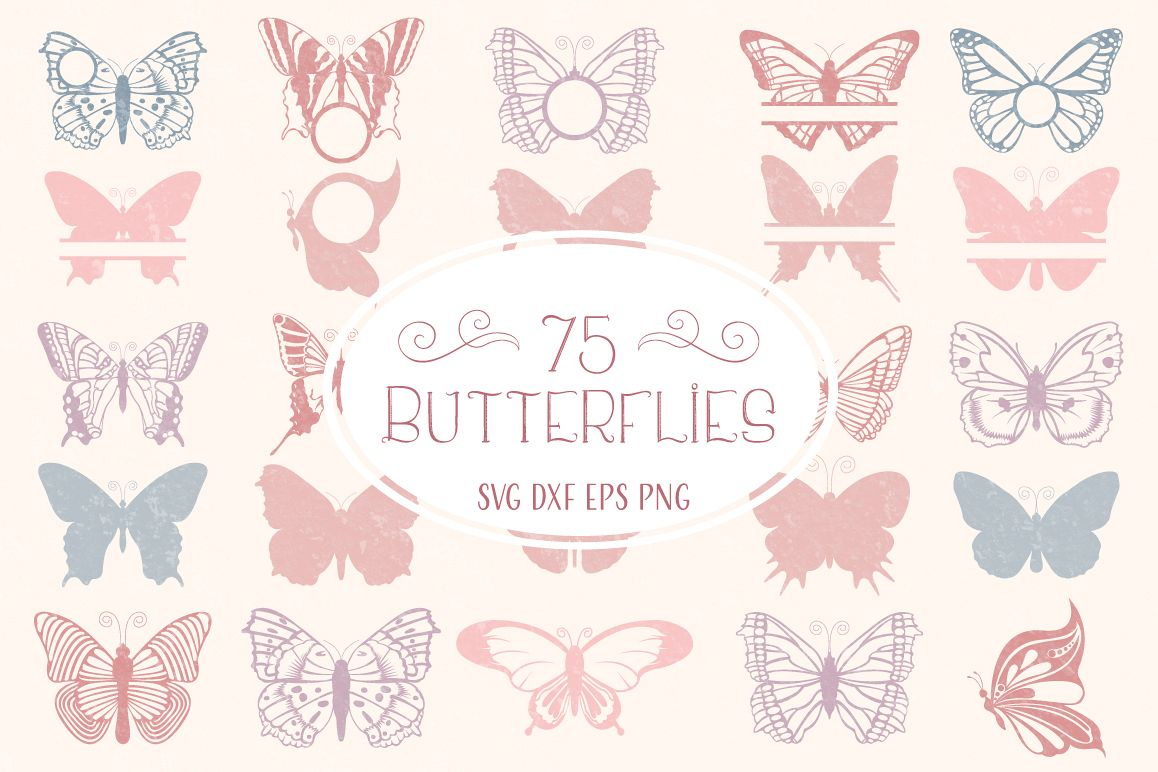 Butterfly SVG, Butterfly Monogram SVG Cut Files Bundle example image 1