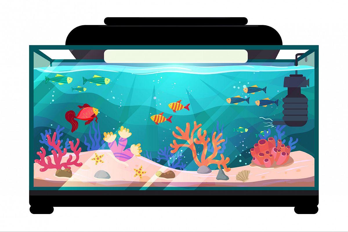 Aquarium illustration example image 1