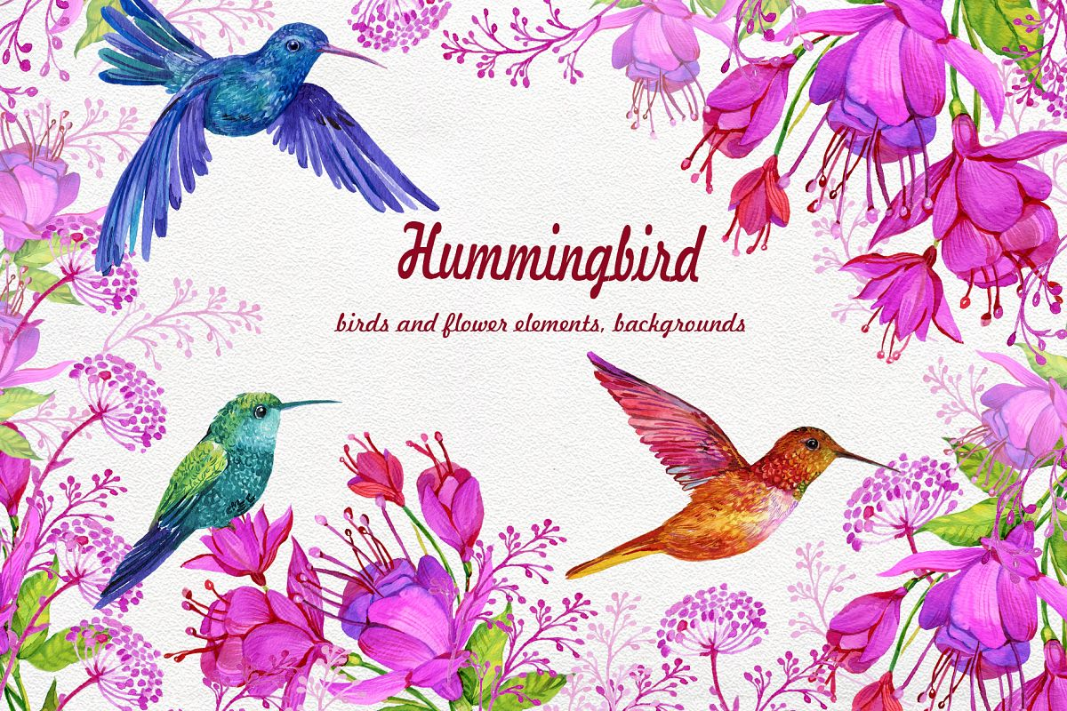 Hummingbirds Clipart flowers. PNG watercolor painting, Birds example image 1