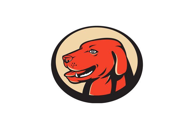 labrador golden retriever dog head example image 1