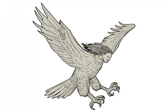 Harpy Swooping Drawing example image 1
