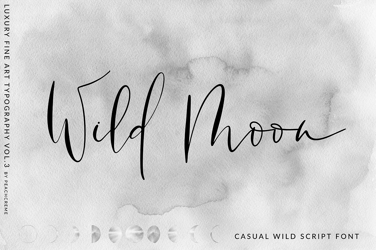 Wild Moon - Casual Script Font example image 1