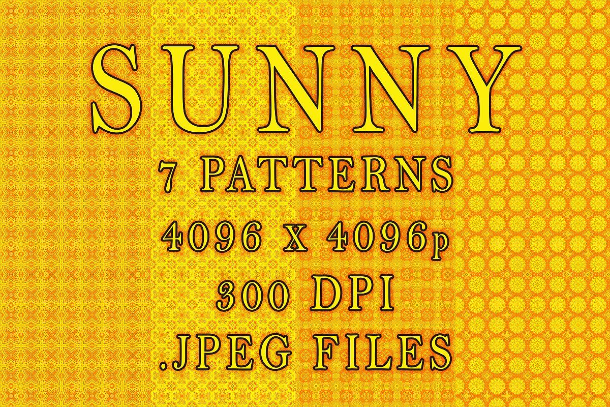 Sunny example image 1