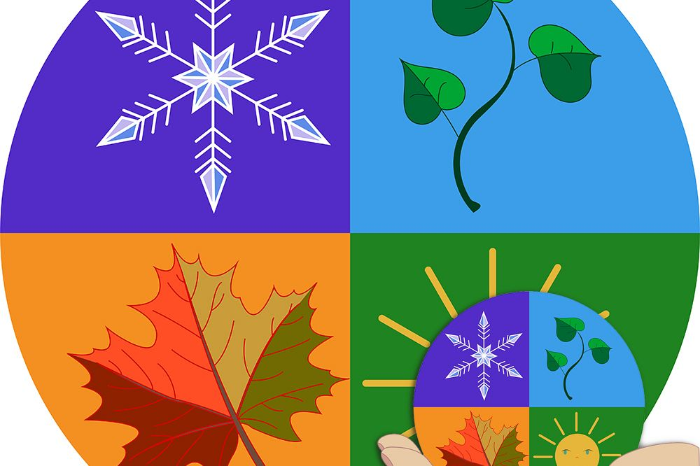 Patterns. Planet as in the palm of your hand. 4 seasons. example image 1