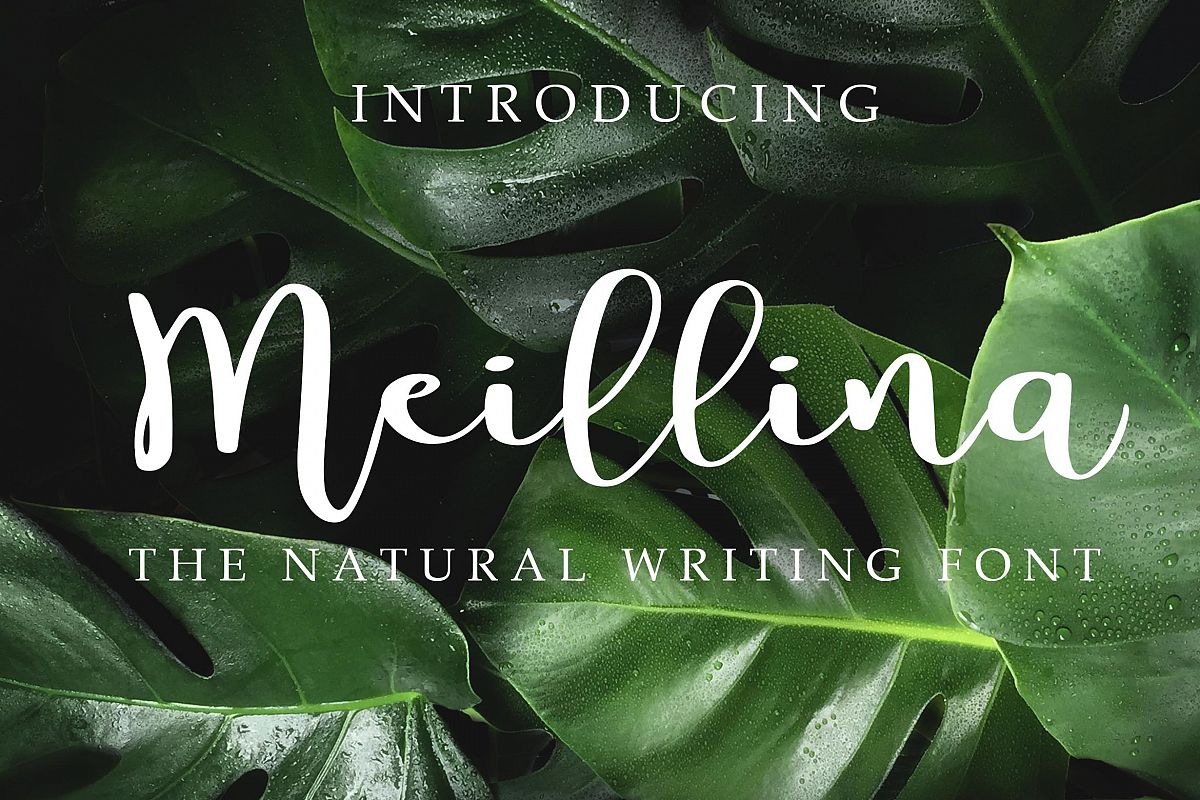 Meillina Natural Font example image 1