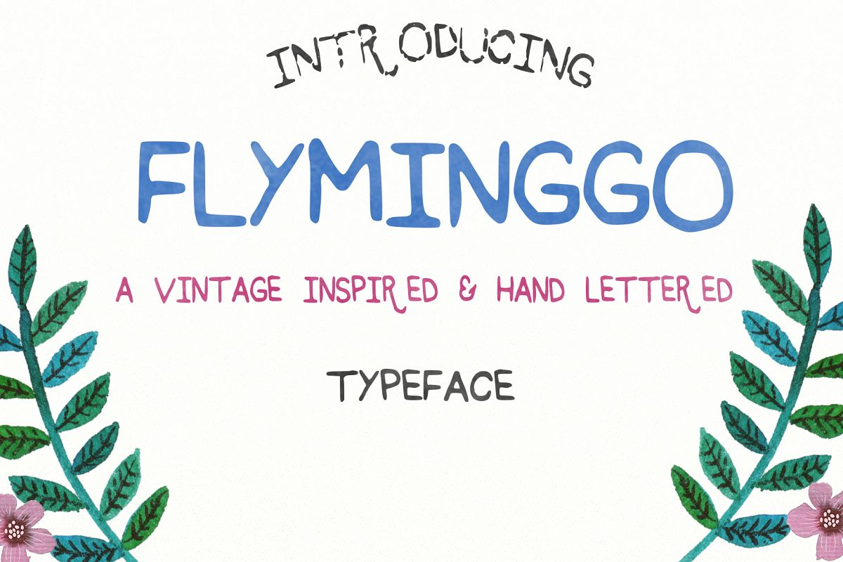 Flyminggo example image 1