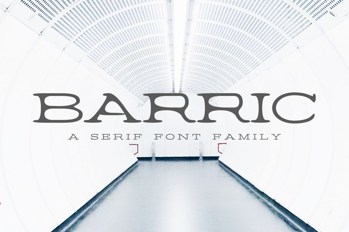 Barric A Serif Font Family example image 1