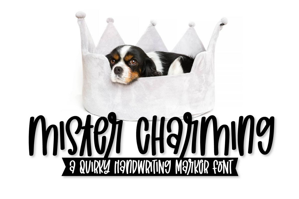 Mister Charming - A Quirky Marker Font! example image 1