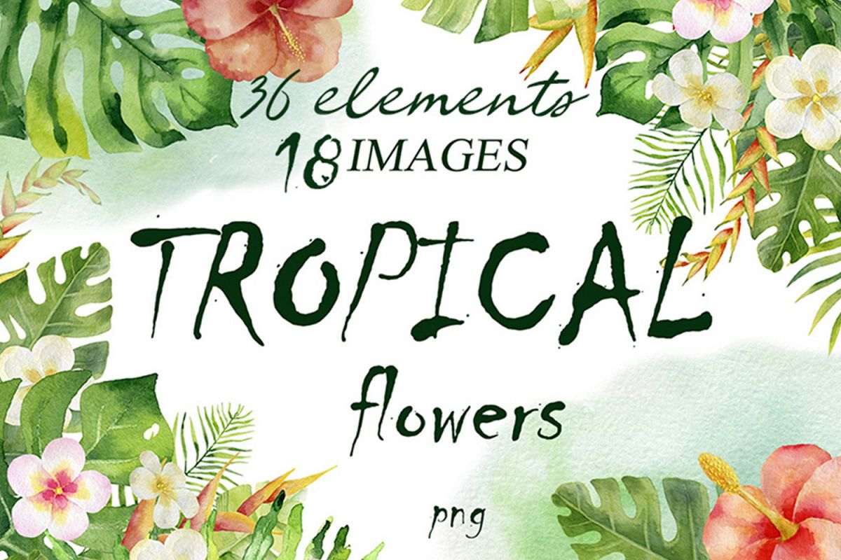 Tropical Flowers. Watercolor collection. example image 1