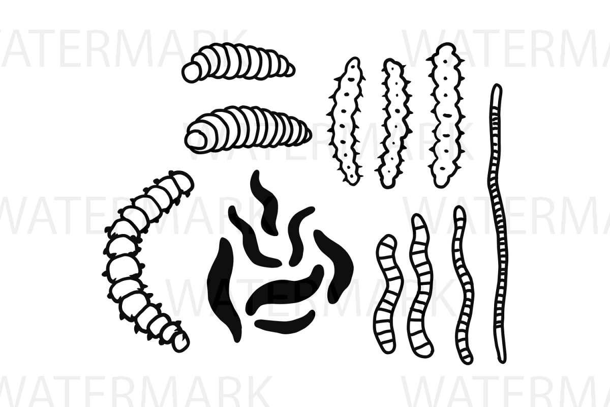 Worms - SVG/JPG/PNG Hand Drawing example image 1