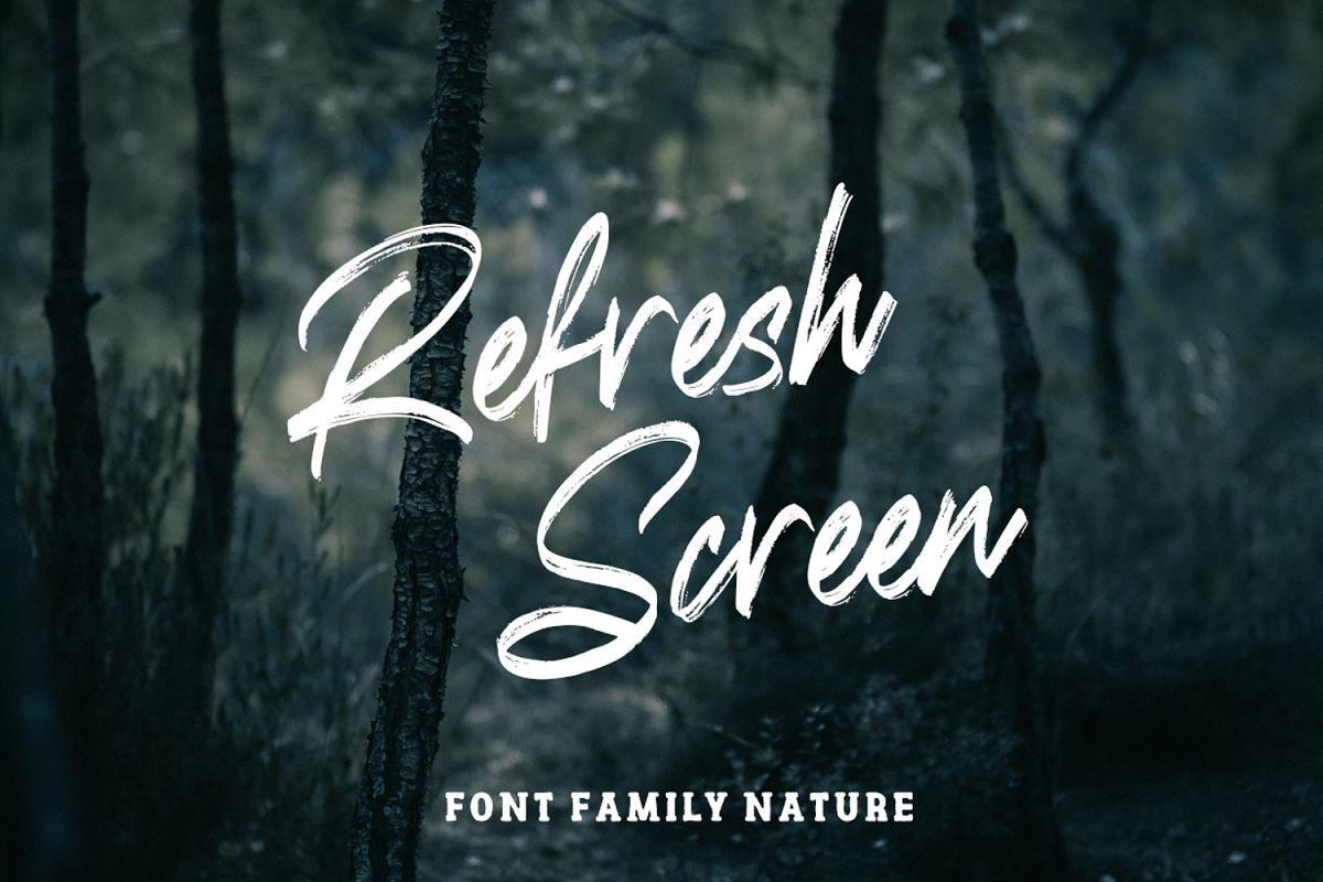 Refresh Screen Brush Script Font Duo example image 1
