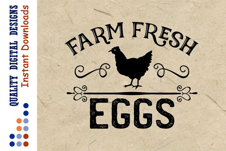 Farm Fresh Eggs SVG Chicken SVG Kitchen example image 1