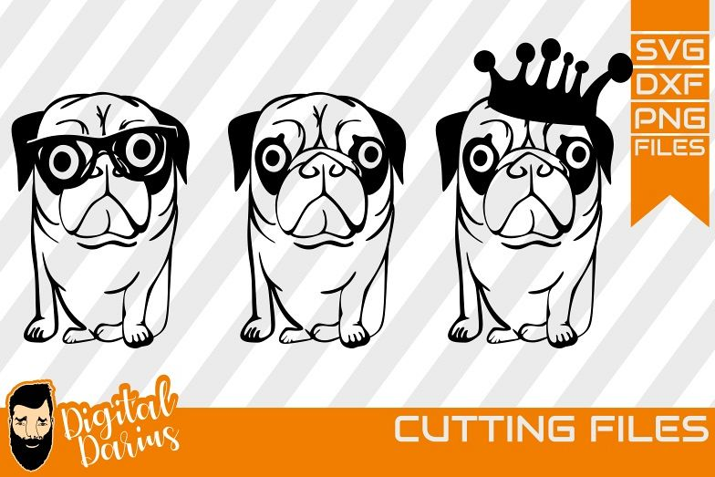 3x Funny bulldog svg, Dog in crown svg, Glasses, Puppy, Dog example image 1