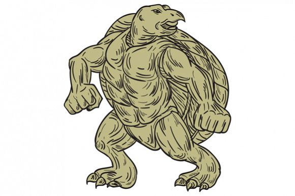 Ridley Sea Turtle Martial Arts Stance Drawing example image 1