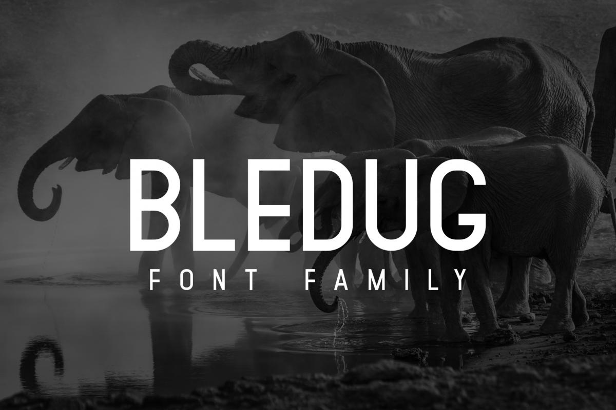 Bledug Font Family example image 1