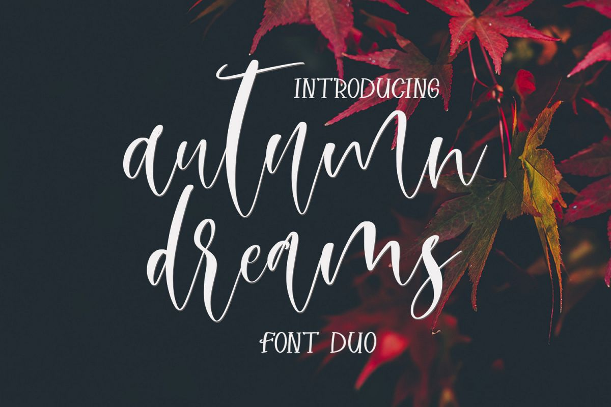 Autumn Dreams Font Duo example image 1