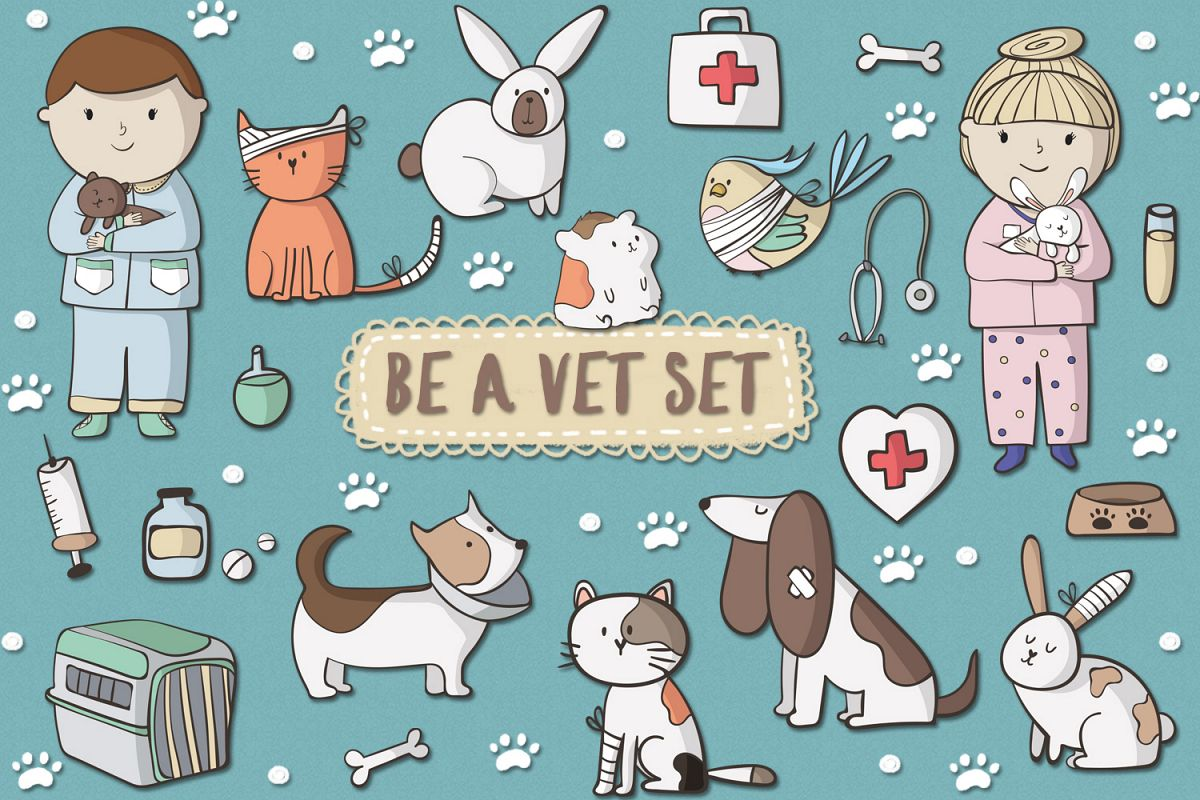 Be A Vet Set example image 1