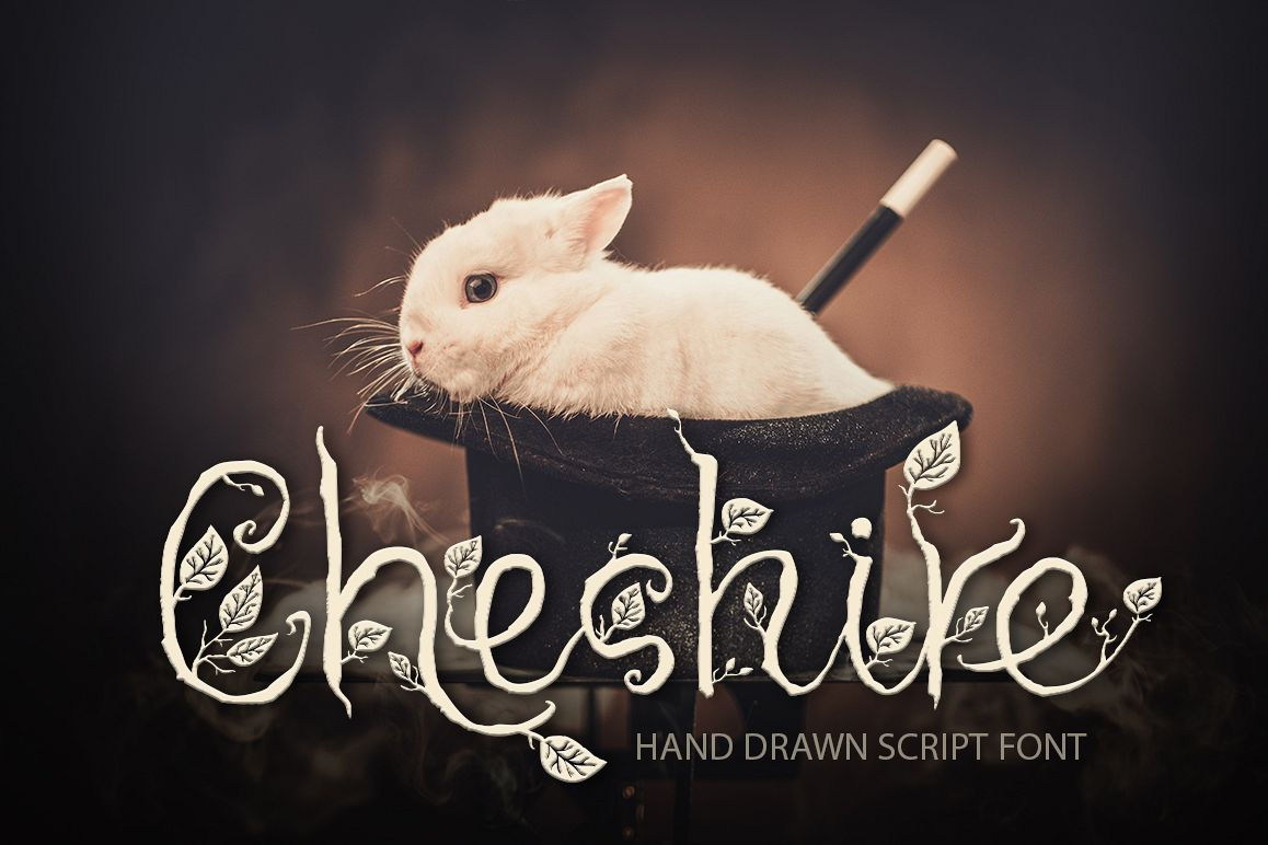 Cheshire. Magic script font. example image 1