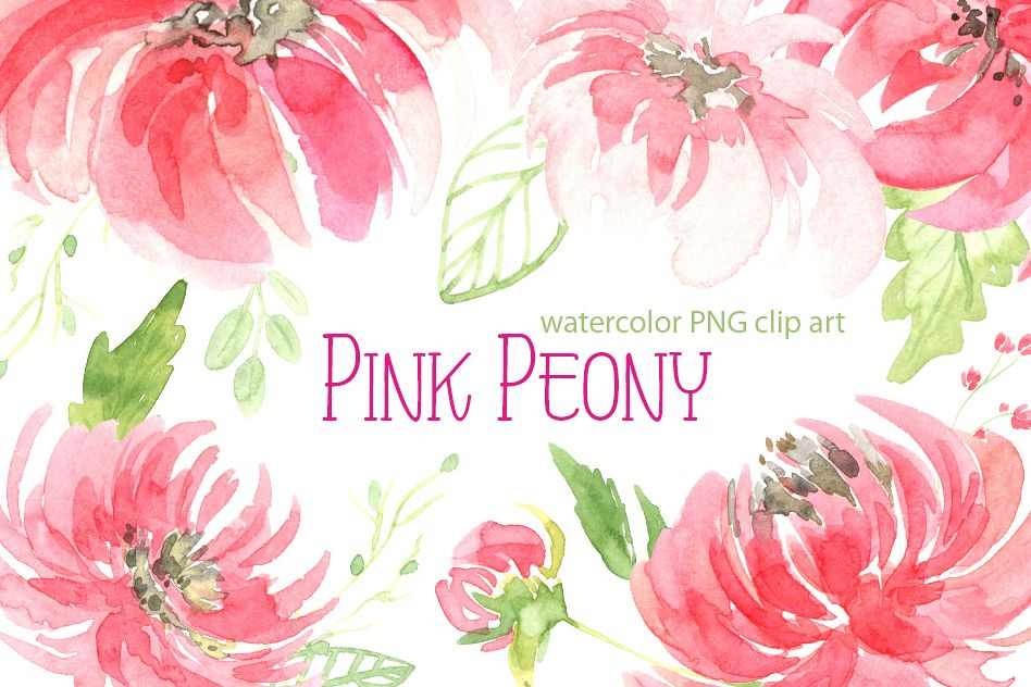 Watercolor peony flowers leaves PNG example image 1