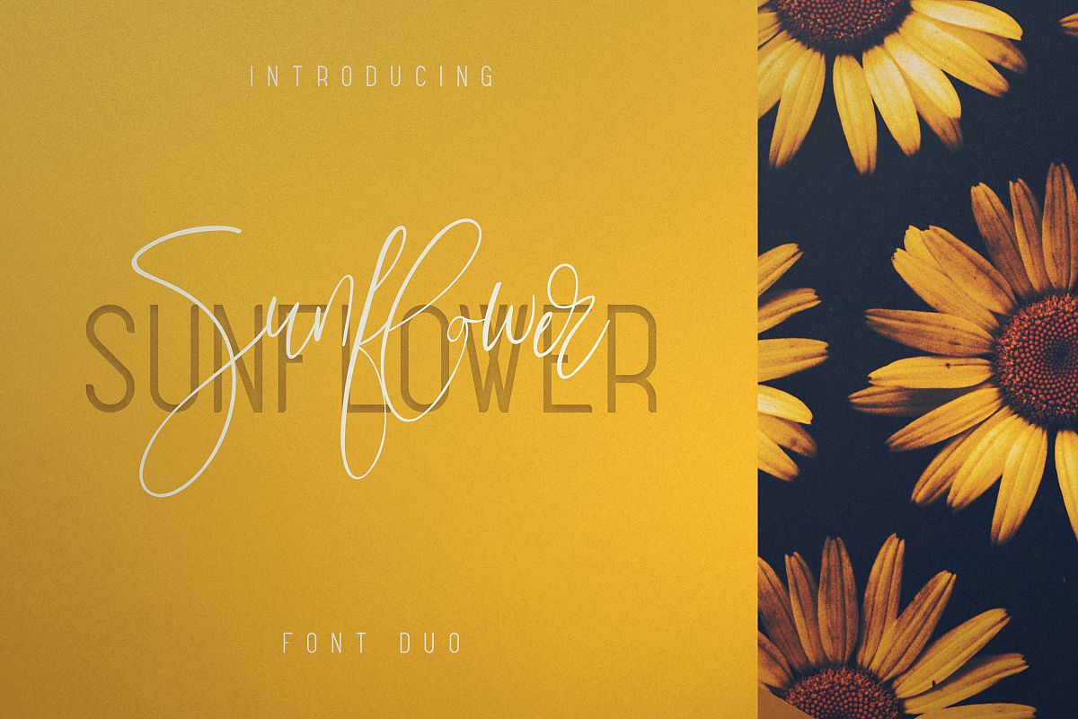 Sunflower - Font Duo example image 1