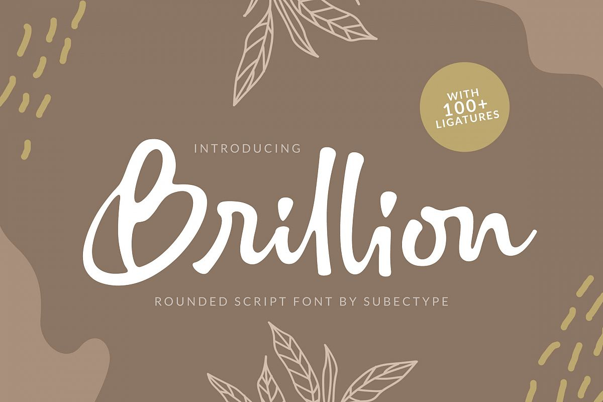 Brillion Rounded Script Font example image 1