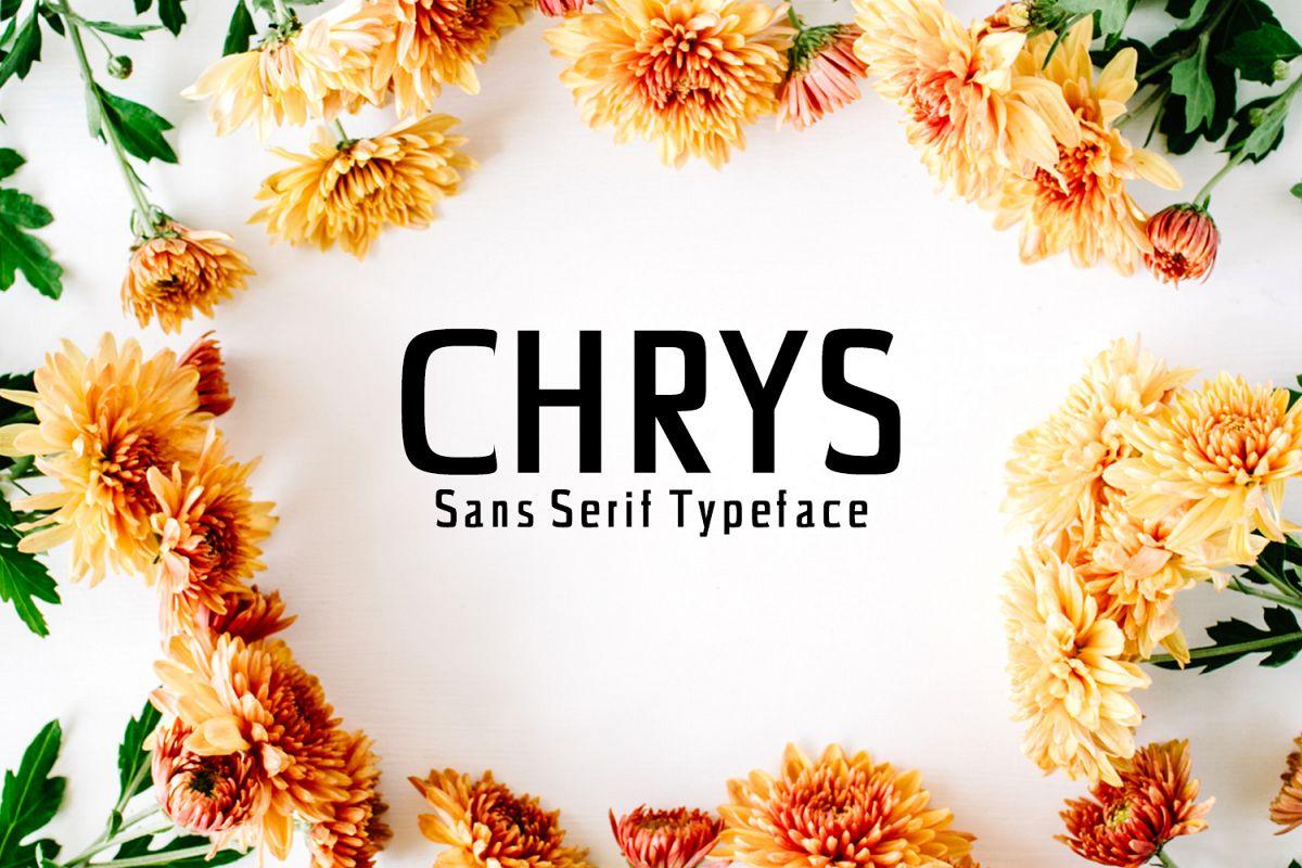 Chrys Sans Serif Typeface example image 1