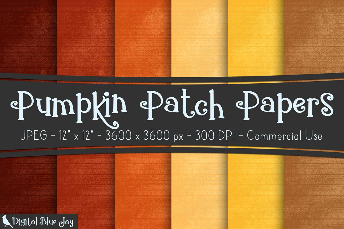 Digital Paper Textured Backgrounds - Pumpkin Patch example image 1