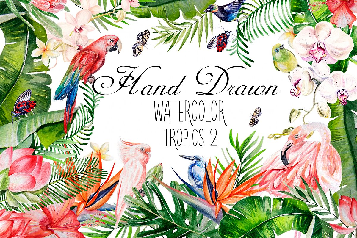 Hand Drawn watercolor TROPICS 2 example image 1