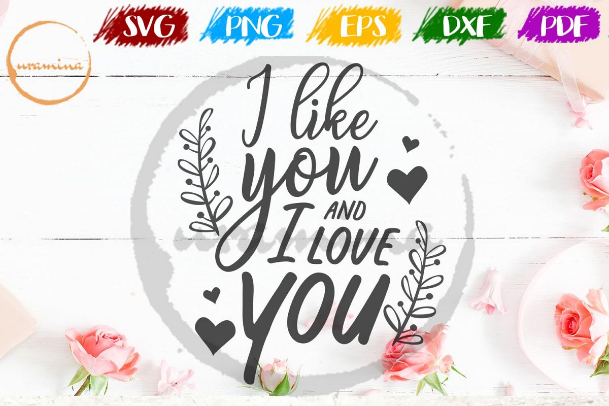 I Like You And I Love You Valentine SVG PDF PNG example image 1