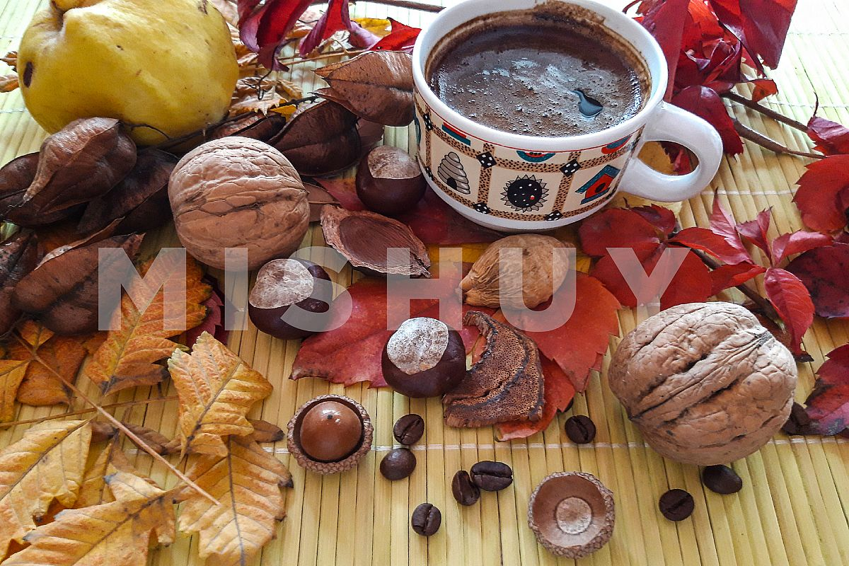 Autumn composition. Cup of coffee and autumn leaves1 example image 1