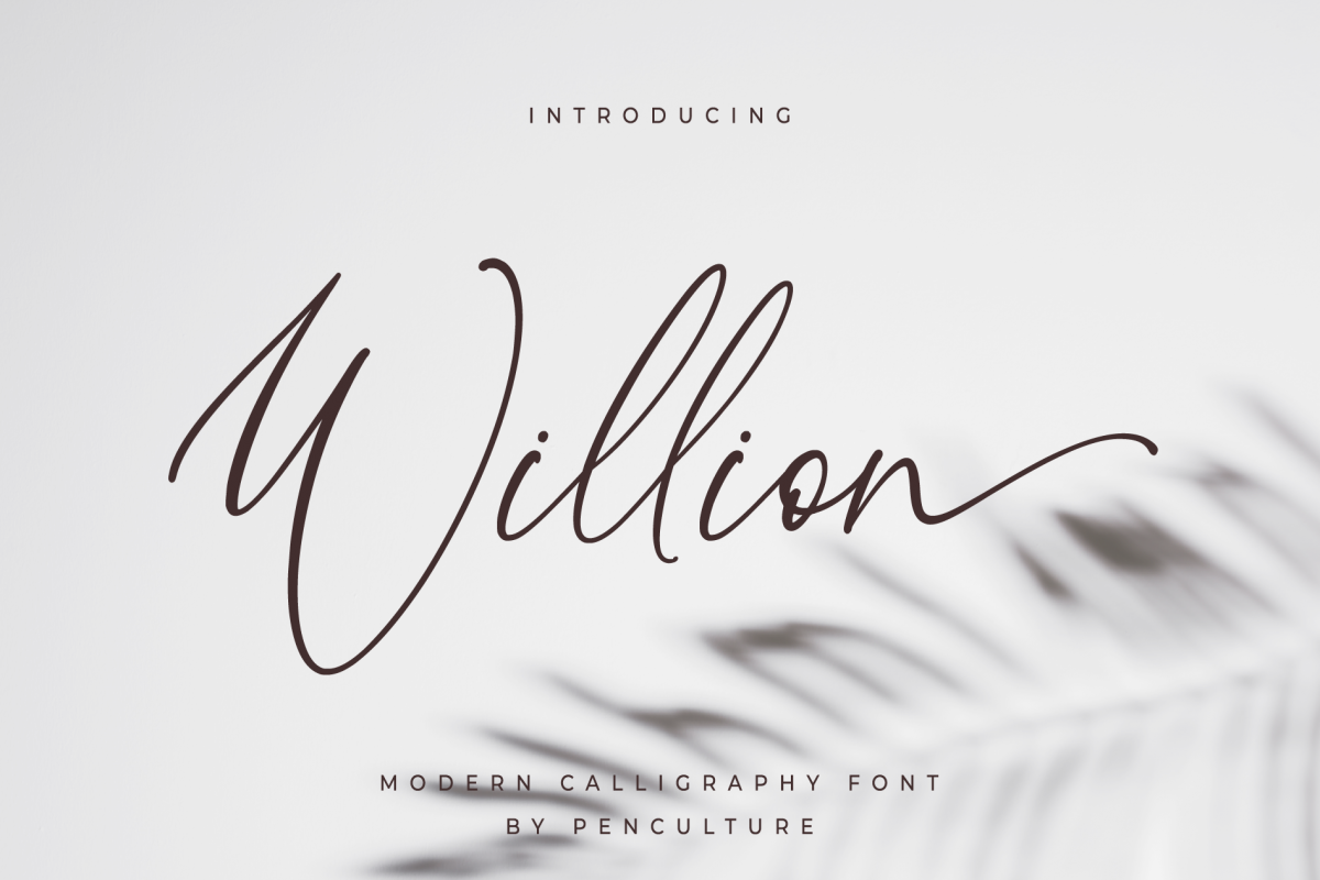 Willion Calligraphy Font example image 1
