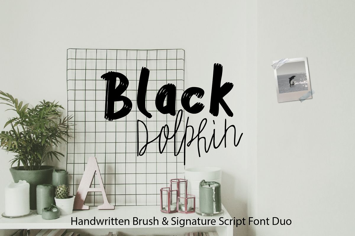 Black Dolphin |Multilingual Sans & Signature Font Duo example image 1