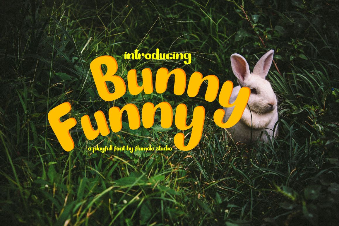 Bunny Funny | Playfull Font example image 1