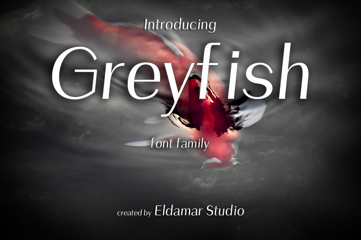 Greyfish Font example image