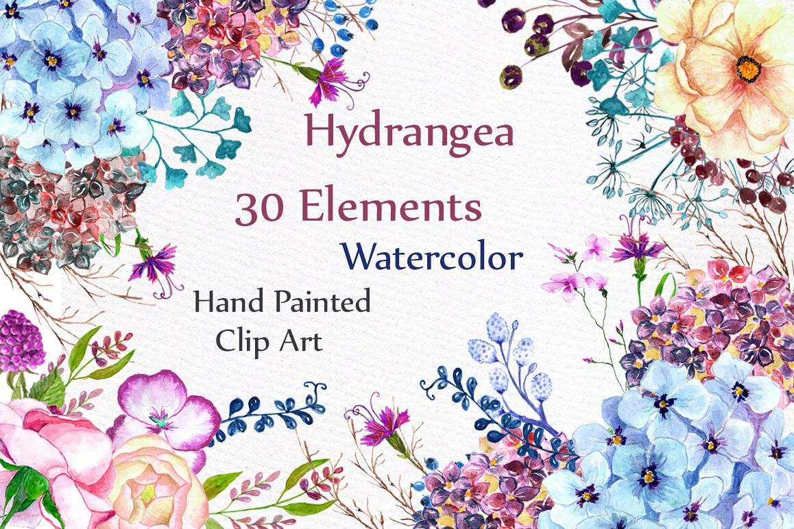 Watercolor hydrangea flowers clipart example image 1