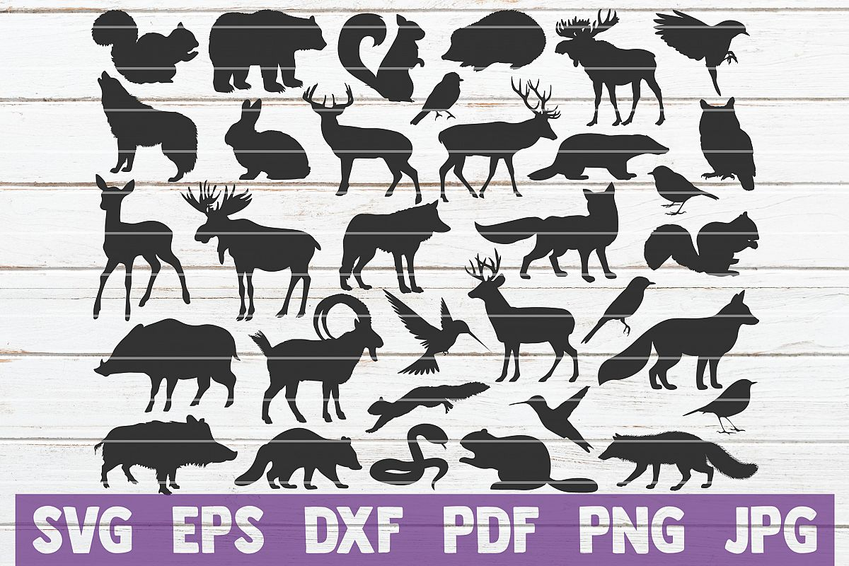 Wild Animals SVG Cut Files | commercial use example image 1