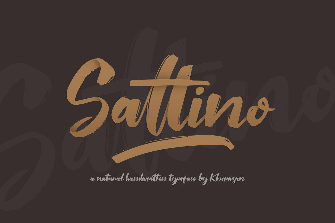 Saltino Script example image 1