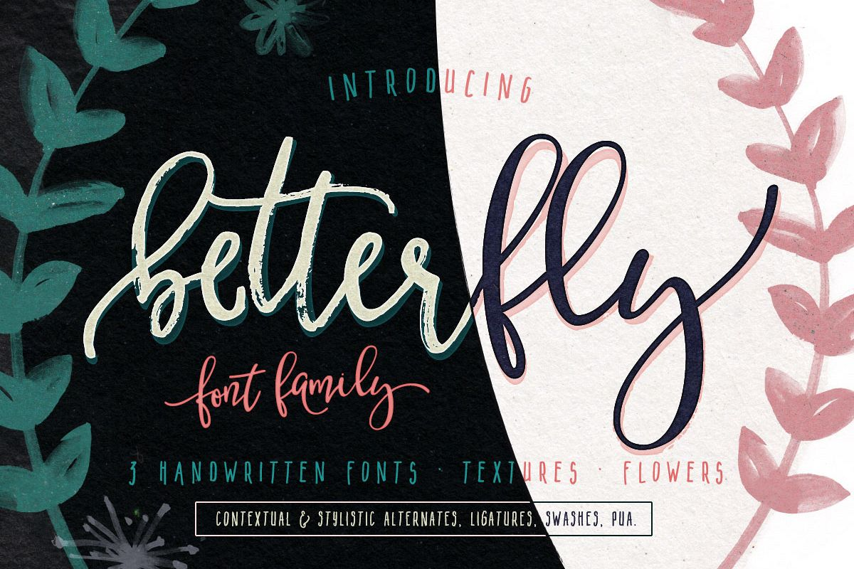 BetterFly - 3 modern fonts & swashes example image 1