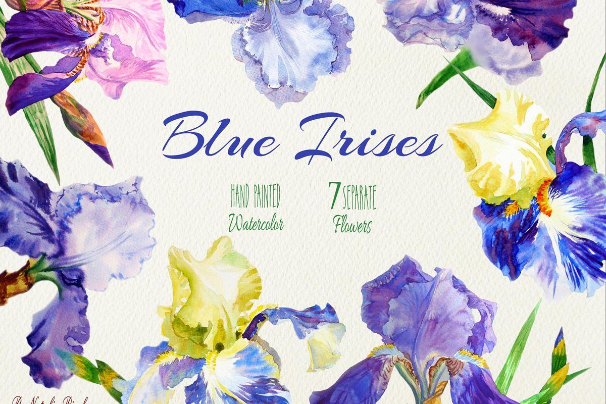Blue Irises. Watercolor Clip Art example image 1