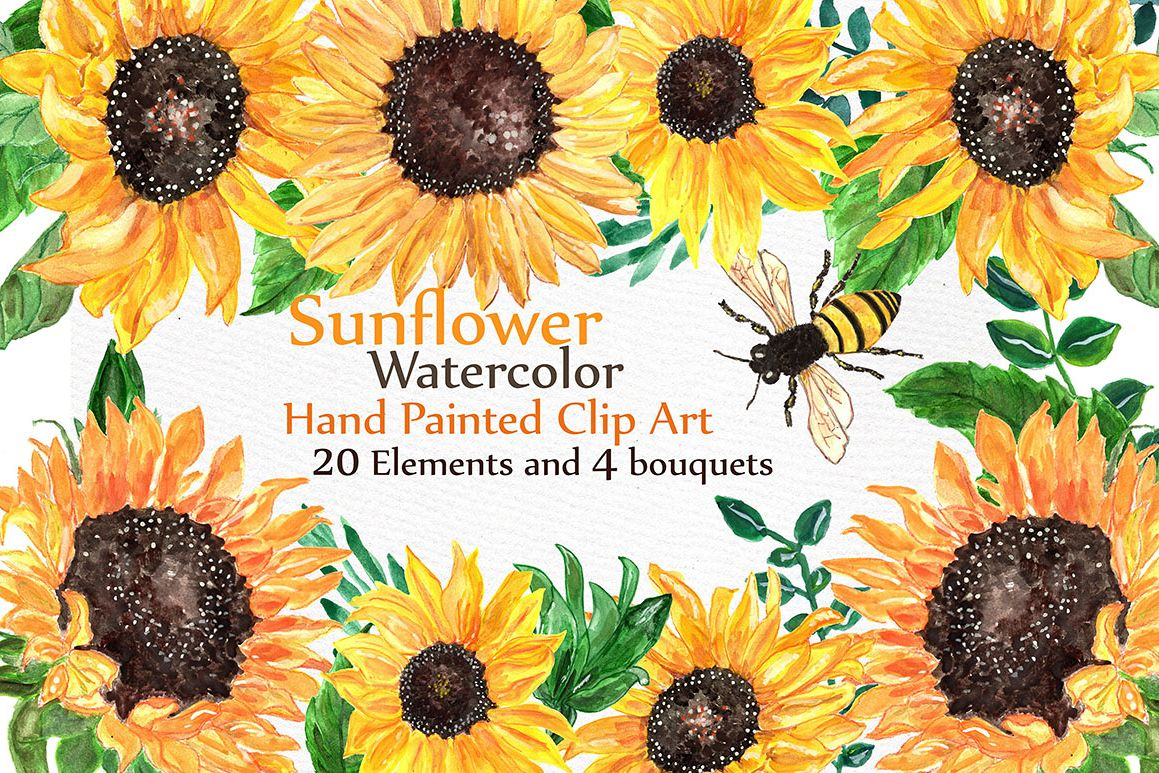 Watercolor sunflowers clipart example image 1